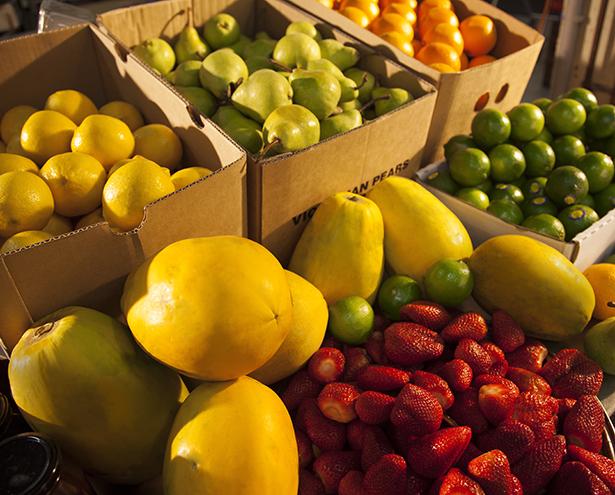 Fresh Fruit Selection for Hank's